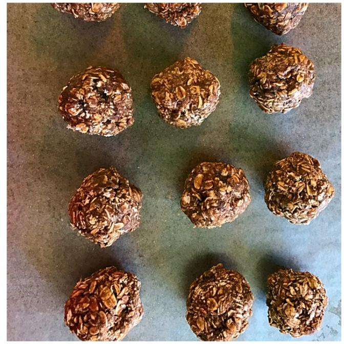 Easy to Make No Bake Oatmeal Protein Bites